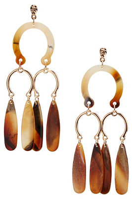 Horseshoe resin earrings