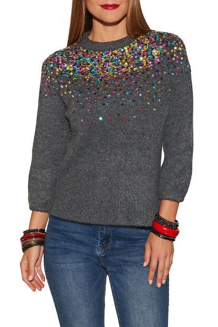 Sequin detail crew neck sweater image