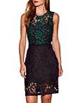 Green Lace Sheath Dress Photo