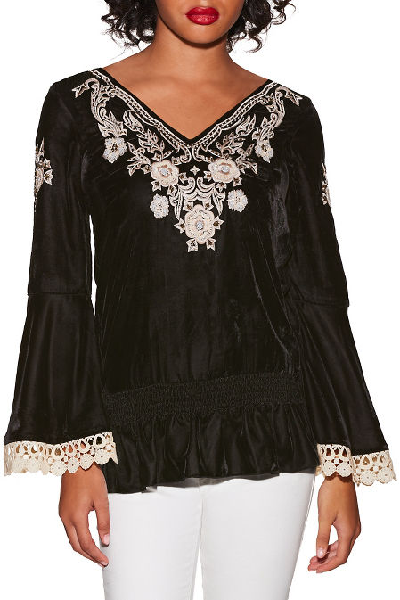 Embroidered velvet blouson top image