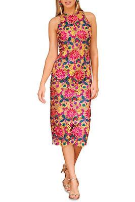 color pop lace sheath dress