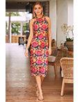 Color Pop Lace Sheath Dress Photo