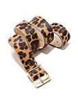 Leopard Print Buckle Belt Photo