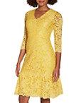 V Neck Lace Flutter Dress Photo